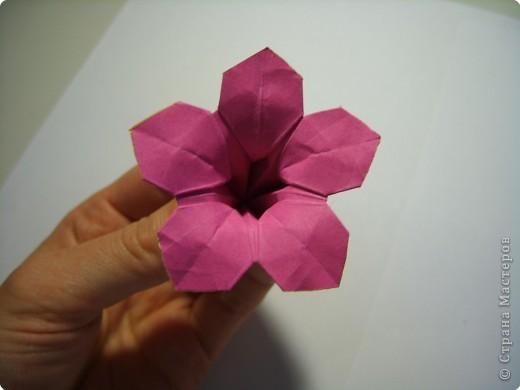 Мастер-класс Оригами МК Цветы Бумага фото 26