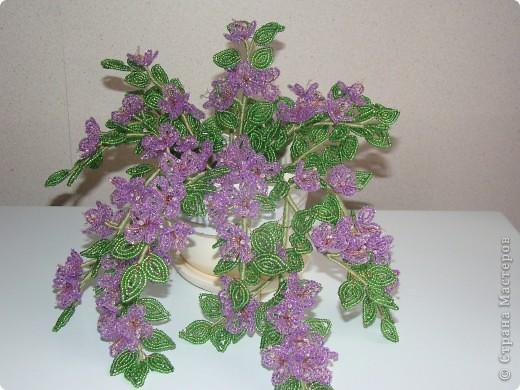 Поделка изделие Бисероплетение Цветок из бисера Бисер фото 1