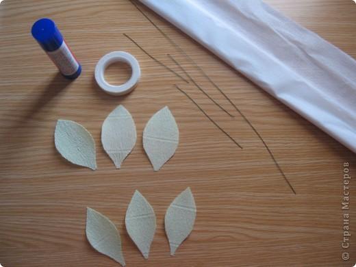 Мастер-класс Свит-дизайн День учителя Моделирование конструирование Сладкий букет Белые лилии + МК Бумага гофрированная фото 6