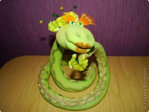 Игрушка Поделка изделие Шитьё Змейка Капрон фото 1