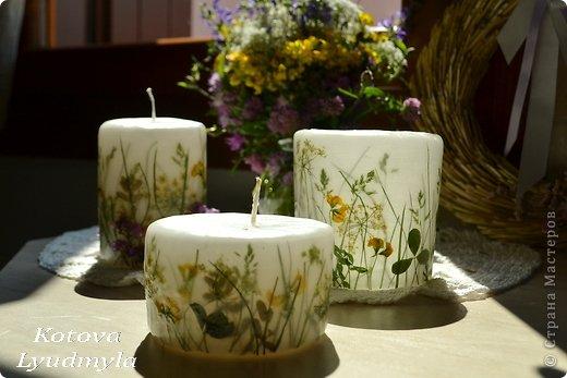 Мастер-класс Поделка изделие Свечи с полевыми цветами Материал природный Свечи фото 2
