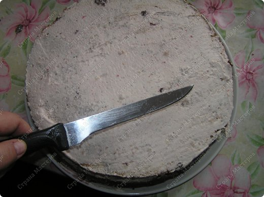 Кулинария Мастер-класс День рождения Рецепт кулинарный Мой именинный тортик Продукты пищевые фото 33
