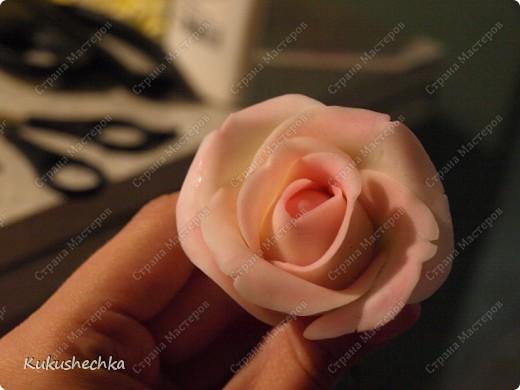 Мастер-класс Лепка Роза о том как леплю ее я Фарфор холодный фото 15