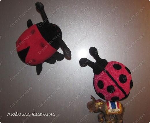 Мастер-класс Вязание крючком Люблю Божьих коровок магнит на холодильник Вата Магниты Нитки фото 19