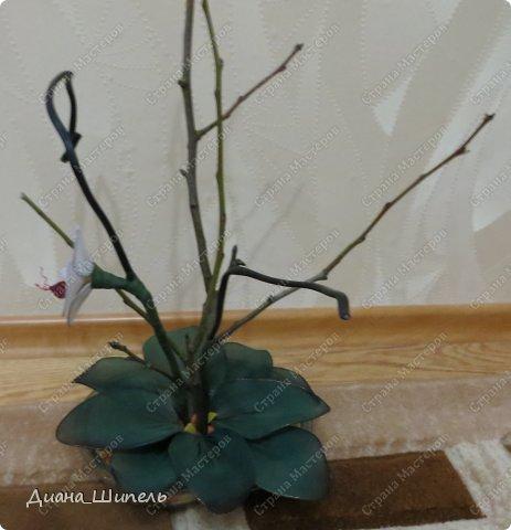 Мастер-класс Поделка изделие Моделирование Орхидея Мой первый мк Капрон Проволока фото 6
