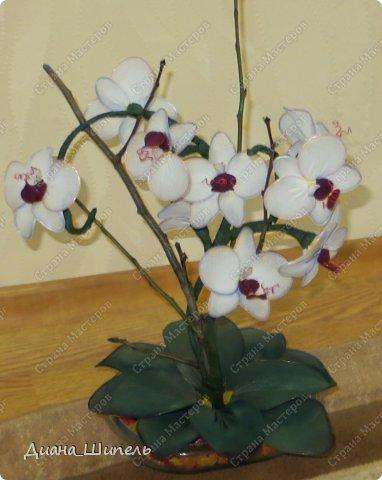 Мастер-класс Поделка изделие Моделирование Орхидея Мой первый мк Капрон Проволока фото 8