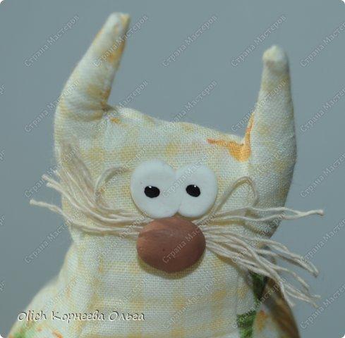 Игрушка Шитьё Толстые кофейные коты Выкройка Клей Кофе Пряжа Пуговицы Ткань Фарфор холодный Шпагат фото 11