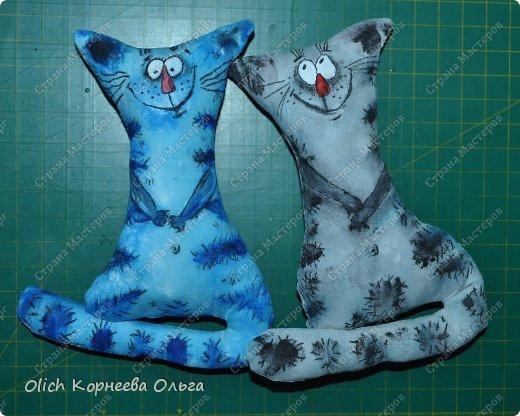Игрушка Мастер-класс Рисование и живопись Шитьё Разукрашиваем текстильного кота Краска Ткань фото 48