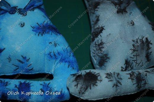 Игрушка Мастер-класс Рисование и живопись Шитьё Разукрашиваем текстильного кота Краска Ткань фото 47
