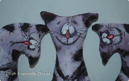 Игрушка Мастер-класс Рисование и живопись Шитьё Разукрашиваем текстильного кота Краска Ткань фото 3