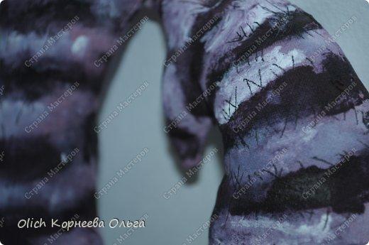 Игрушка Мастер-класс Рисование и живопись Шитьё Разукрашиваем текстильного кота Краска Ткань фото 5