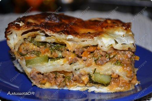 Кулинария Мастер-класс Рецепт кулинарный Мясной пирог из лаваша Овощи фрукты ягоды Продукты пищевые фото 1