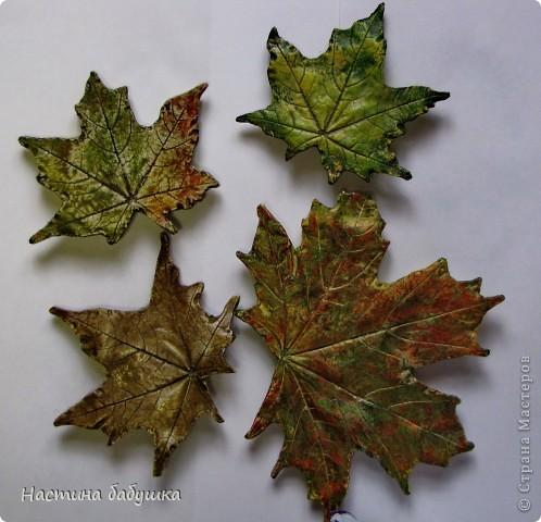 Мастер-класс Осенние весенние листья Воск Гипс Краска Листья