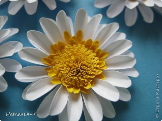 Мастер-класс Бумагопластика Квиллинг Цветы - ромашки Бумага фото 6
