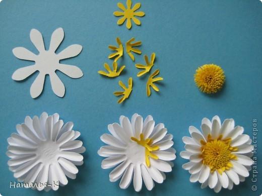 Мастер-класс Бумагопластика Квиллинг Цветы - ромашки Бумага фото 5