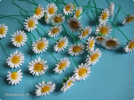 Мастер-класс Бумагопластика Квиллинг Цветы - ромашки Бумага фото 2