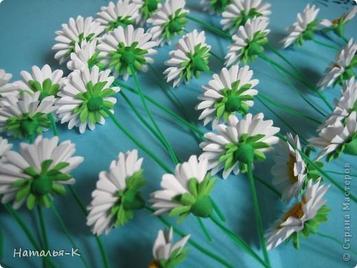 Мастер-класс Бумагопластика Квиллинг Цветы - ромашки Бумага фото 3