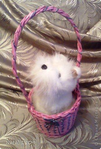 Необычное плетение Foto0832