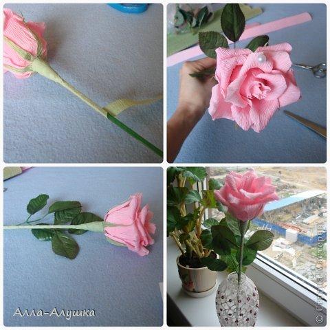 Мастер-класс Свит-дизайн 8 марта День рождения Бумагопластика МК Одиночная роза Бумага гофрированная Продукты пищевые фото 9