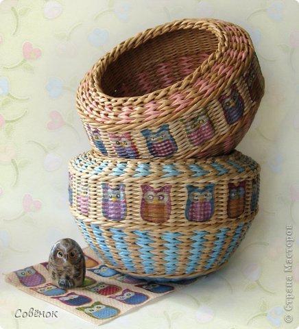 Мастер-класс Поделка изделие Плетение Разноцветные совята Бумага газетная Трубочки бумажные фото 1