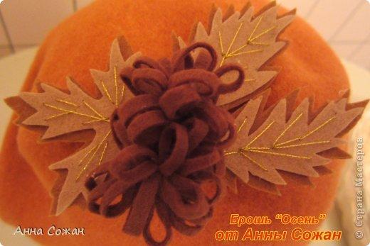 Украшение Моделирование конструирование Осенние броши из фетра Бусинки Фетр фото 2