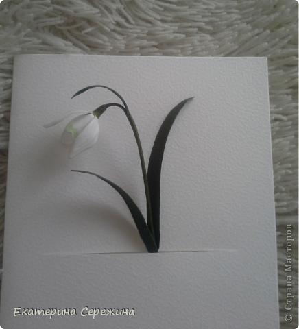 Мастер-класс Открытка Бумагопластика Подснежник из бумаги Бумага фото 17