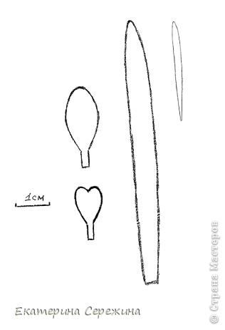 Мастер-класс Открытка Бумагопластика Подснежник из бумаги Бумага фото 2