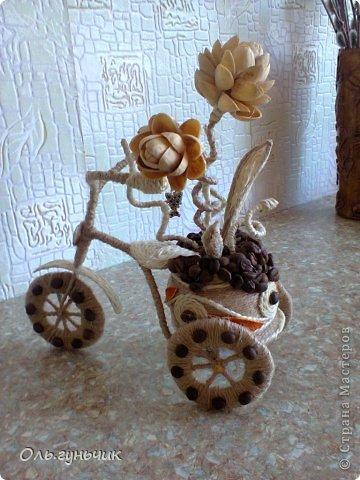 Мастер-класс Поделка изделие Лепка Моделирование конструирование Шпагатно-фисташковый цветок Кофе Проволока Салфетки Тесто соленое Шпагат фото 22