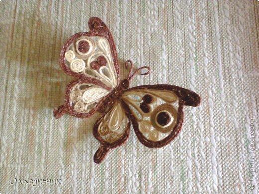 Интерьер Мастер-класс Поделка изделие Аппликация МК Филигранной бабочки Шпагат фото 1