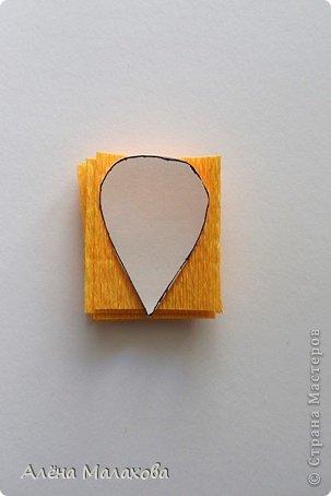 Мастер-класс Поделка изделие Моделирование конструирование Роза из гофрированной бумаги Бумага гофрированная Клей фото 4