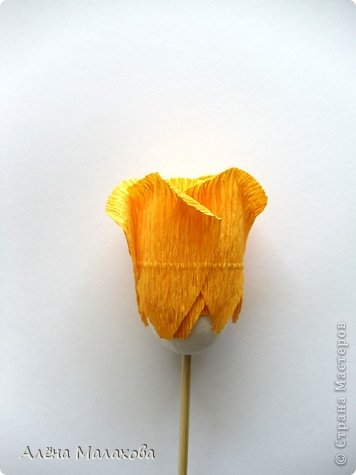 Мастер-класс Поделка изделие Моделирование конструирование Роза из гофрированной бумаги Бумага гофрированная Клей фото 22
