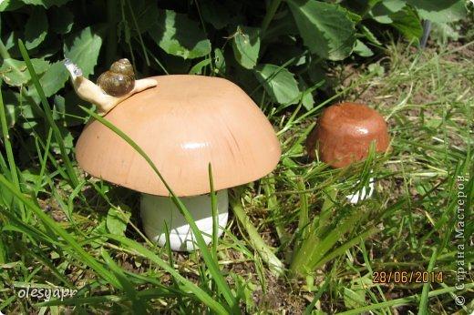 Грибы сделаны из гипса, покрыты акриловой краской и акрил.лаком. фото 1