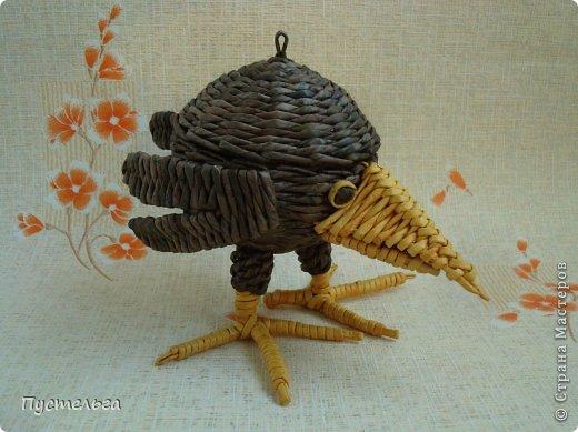 Мастер-класс Поделка изделие Плетение Сорока ворона Бумага Трубочки бумажные фото 4