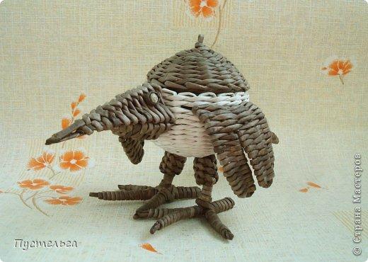Мастер-класс Поделка изделие Плетение Сорока ворона Бумага Трубочки бумажные фото 5
