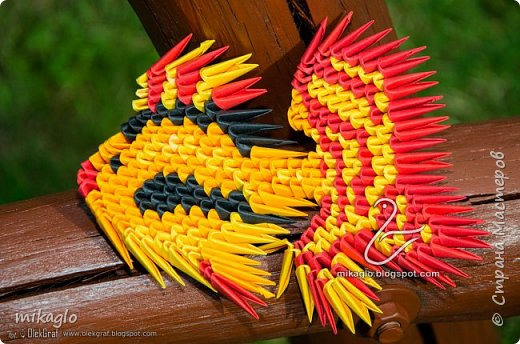 Golden fish фото 1