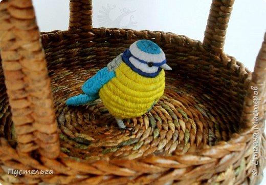 Ежегодно 1 апреля отмечается Международный день птиц. В это время из теплых краев возвращаются пернатые, а взрослые и дети вывешивают для них новые скворечники. Союз охраны птиц России избрал птицей 2017 года буроголовую гаичку - пухляка.  фото 4